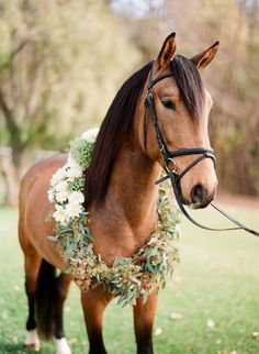 Flowers and horses naturally