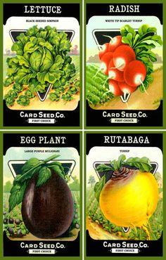 Olde America Antiques | Quilt Blocks | National Parks | Bozeman Montana : Vegetables - Vegetable Set 5