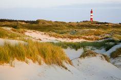 Welche Nordseeinsel eignet sich für euren Urlaub? Hier bekommt ihr eine Übersicht über die 12 beliebtesten Nordseeinseln der Deutschen. Schaut rein!