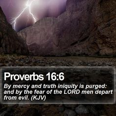 Proverbs 16:6 By mercy and truth iniquity is purged: and by the fear of the LORD men depart from evil. (KJV)  #Love #Mountains #Priest #Rock #Life #WiseQuotes #JesusLovesYou http://www.bible-sms.com/