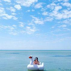 I need #vitaminsea #blue #ocean #beautifuldestination #travel  to #paradise #heavenonearth #beachlife #island #seeaustralia #hamilton #whitehaven #australiagram_qld #whitsundays #sydney #melbourne #greatbarrierreef #floats #ootd #swan  #pic #selfie by nanalebelle http://ift.tt/1UokkV2