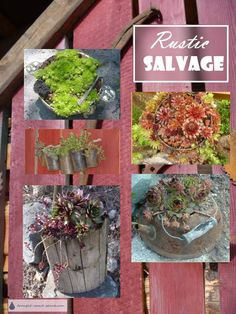 garden Decoration Unique - Rustic Salvage Garden Art made from recycled found objects and scrap Unique Gardens, Rustic Gardens, Amazing Gardens, Outdoor Gardens, Garden Junk, Garden Art, Succulent Gardening, Container Gardening, Landscaping Retaining Walls