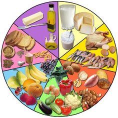Roue alimentaire