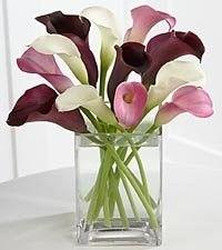 love cala lillies