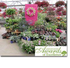 perennials @ sipkens nurseries