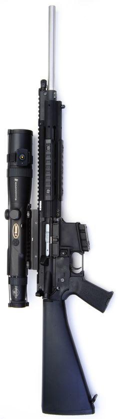 Real Guns - The Ruger SR556 Meets Eliminator II