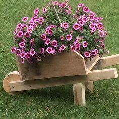 wheelbarrow flower pot