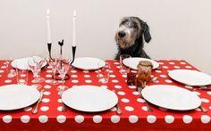 regole del bon ton a tavola