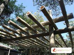 Pergola Ideas For Patio Pergola Attached To House, Pergola With Roof, Covered Pergola, Patio Roof, Pergola Plans, Pergola Garden, Diy Pergola, Pergola Kits, Gazebo
