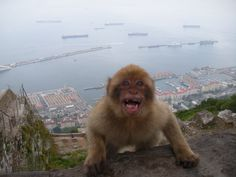 Dang nature, you scary!  Gibraltar, Spain