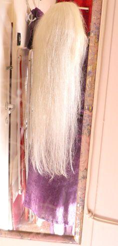 Doreen Ellen Bell-Dotan February 2013 Long Silver Hair, White Hair, February, Long Hair Styles, Women, Gray, Long Hairstyle, Long Haircuts, Long Hair Cuts