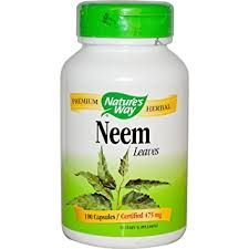 Neem (Azadirachta indica) is an Ayurvedic herbal from India traditionally used for purifying and cleansing. It's benefits are also similar to Echinacea and Goldenseal. Great Lakes Gelatin, Azadirachta Indica, Menopause Relief, Oregano Oil, Vitamins For Women, Nutritional Supplements, Natural Health, Natural Vitamins, Herbalism
