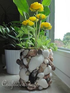 Up-cycle tin can to flower pot    Instructions:  http://www.craftideas.info/html/seashell_can_d.html