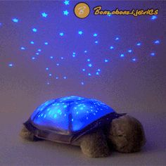 3 Cute turtle shape : adorable toy ,which children and kid can play. 1 Sleep soothing :it projects fascinating starry night sky on ceiling and walls,which help baby and kids falling asleep. 1 x LED Night Light. Best Night Light, Star Night Light, Light Up, Small Turtles, Cute Turtles, Kids Falling, Scared Of The Dark, Nursery Night Light, Star Ceiling