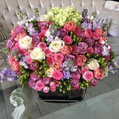 Beautiful Rose Flowers, Unusual Flowers, Beautiful Flower Arrangements, Amazing Flowers, Floral Arrangements, Beautiful Flowers, Floral Bouquets, Floral Wreath, Happy Birthday Flower