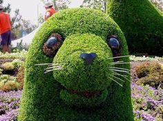 Wonderful Pictures: Beautiful Gardens around the world