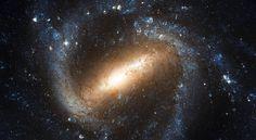 ¿Qué son las ondas gravitacionales y porqué son importantes?