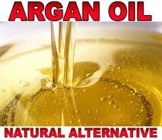 If you're looking for a cheaper alternative to argain oil, then coconut oil is going to be your best option. Argan Oil Natural, Argan Oil Face, Argan Oil Benefits, Acne Breakout, Dry Scalp, Hair Regrowth, Moisturiser, Side Effects, Vitamin E