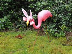 Happy Easter Flamingo!