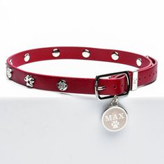 Dog Collar Red with Silver