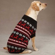 East Side Collection Acrylic Caribou Creek Dog Sweater, X-Small, Black Large Dogs, Small Dogs, I Love Dogs, Cute Dogs, Pet Sweaters, Dog Sweater Pattern, Reindeer Sweater, Medium Sized Dogs, Oh Deer