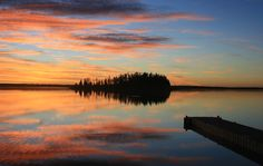Elk Island National Park near Edmonton Alberta