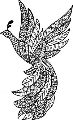 Beautiful Bird Advanced Animal Coloring Page