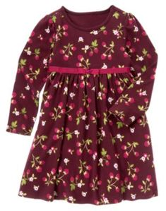 Gymboree - Berry Patch 8/20/12  Knit dress