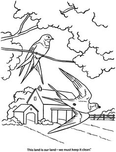 Spring Coloring Pages - Kids Spring Wild Birds Coloring Page Sheets of the Spring Season Summer Coloring Pages, Coloring Pages To Print, Coloring Book Pages, Printable Coloring Pages, Coloring Pages For Kids, Landscape Drawings, Bird Drawings, Spring Drawing, High School Art Projects