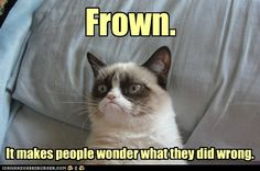 Grumpy Cat Advice - Cheezburger