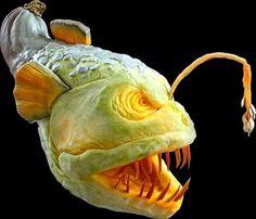 Squali d'anguria e mostri di zucca, l'arte dell'intaglio
