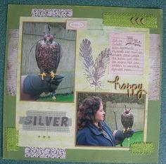 roofvogelworkshop Slechtvalk Silver
