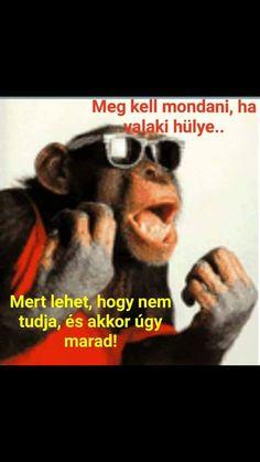 Haha, Clever, Memes, Funny, Movie Posters, Humor, Ha Ha, Meme, Film Poster