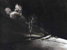 Elio Ciol - Attimi di luce