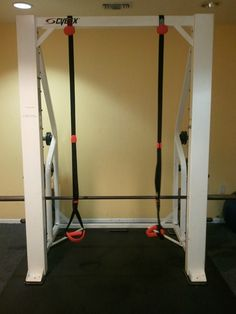 Kettlebell Therapy™: Product Review: Jungle Gym XT by Lifeline USA
