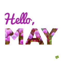 Hello, May. On masked fuchsia flowers background. Hello May Quotes, Hello October Images, Good Night Hug, New Month Wishes, New Month Quotes, Welcome May, Quotes Gif, Spring Quotes, Flower Landscape
