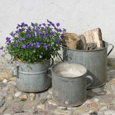 Vintage Pails and Flowers
