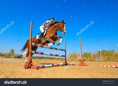 Image Of Female Jockey With Purebred Horse Jumping A Hurdle