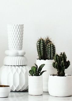 EVDE YEŞİL HAREKAT | MY DECO LOVE work with a theme - eg colour of pots...