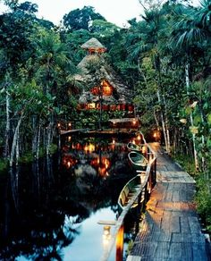 Amazon Primary Rainforest Lodge Ecuador    I just wanted to say, that if I could do anything, and I mean anything at all, I would live in the rainforest. Maybe studying cures for cancer, maybe becoming a conservationist, maybe becoming a missionary, teaching the ways of christ to the (still primitive) indigenous tribes. This photo is beyond beautiful. To me, this is paradise <3