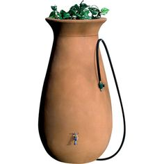 Rain barrel with planter top.