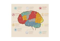 Два полушария нашего мозга постоянно взаимодействуют друг с другом, но каждое выполняет свои особые функции. Проще говоря, левое полушарие разбирает проблемы на ряд элементов и анализирует их. Правое воспринимает мир цельно и предлагает нетрадиционные...
