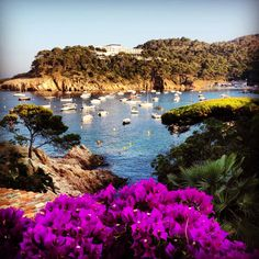 In the vicinity of Begur
