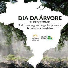 Rede Natura Maria Berlofa: Dia da Árvore na Rede Natura...A Natureza agradece...