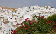 Where to go in andalucia: The Guardian  Photograph: Ian Canham/Alamy