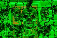 Halloween Party Decor Ideas 'Skull Bar' for Skullivans Island Party  Green lighting, Skulls, Snakes, Greenery  Channeling my inner Indiana Jones