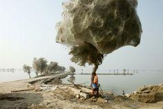 Pakistan: Örümcek Kozaları