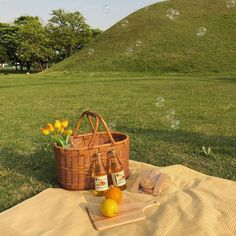 picnic aesthetic for jordan and i Spring Aesthetic, Nature Aesthetic, Aesthetic Photo, Aesthetic Pictures, Aesthetic Green, Korean Aesthetic, Photography Aesthetic, Comida Picnic, Fotografia Retro