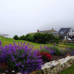 monhegan island maine   On Monhegan Island, Maine   Flickr - Photo Sharing!  It really does look like this! The coastal fog is beautiful followed by a bright sunny day. Can't get any better than that.