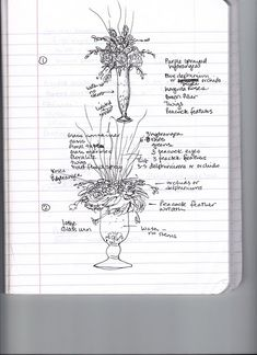 sketches for centerpieces and larger arrangements